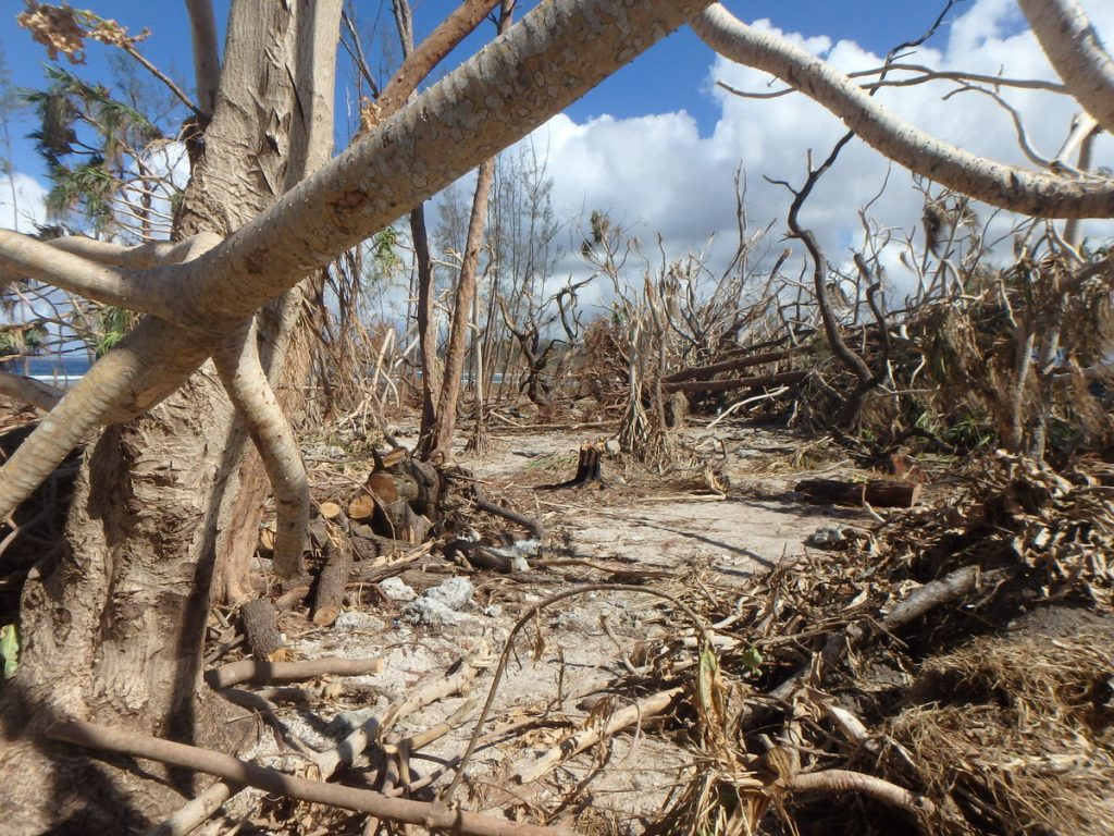 Cyclone Pam Destruction - Epau Village